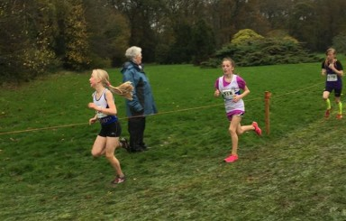 Juvenile success at Leinster Even Ages Cross Country Championship