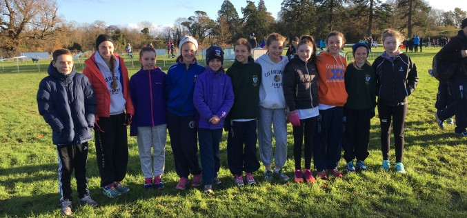 Dunboyne Juveniles Impress at Even Ages All Ireland Cross Country