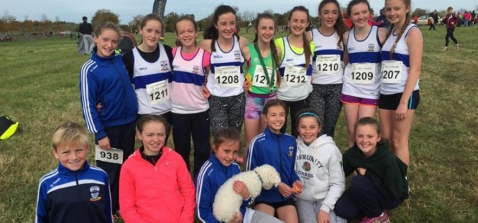 Juveniles at Even Ages Leinster XC Championships, Moyvalley