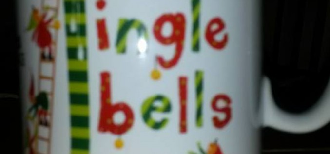 Fit4Youth and Fit4Life at Jingle Bells 5K, Saturday 5th December 2015