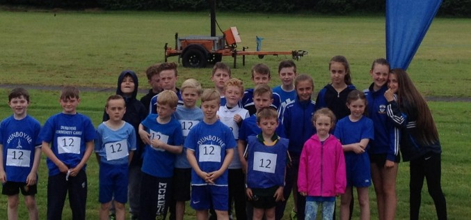 Meath Community Games Finals