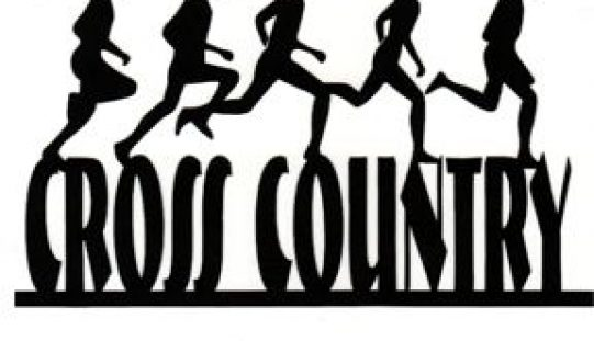 Meath Cross country relays