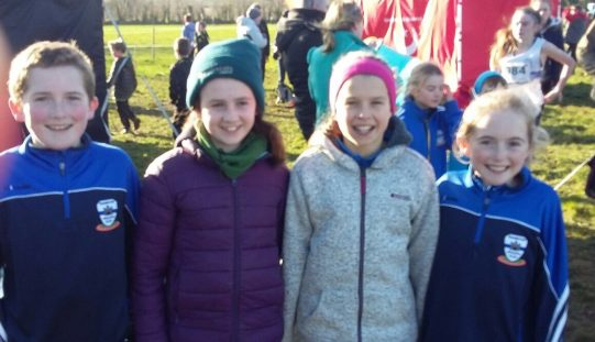 Leinster Uneven Ages Cross Country Adamstown Co Wexford