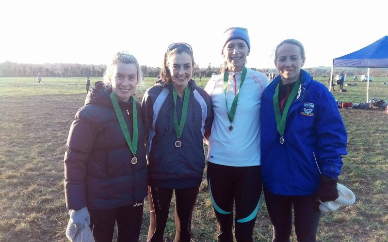 Leinster Senior Cross Country Championships, 11th November 2017