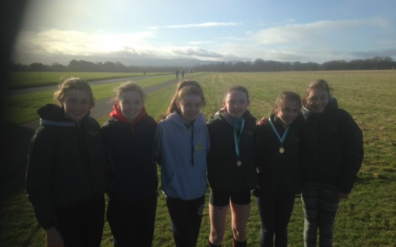 2018 West Leinster Secondary Schools Cross Country